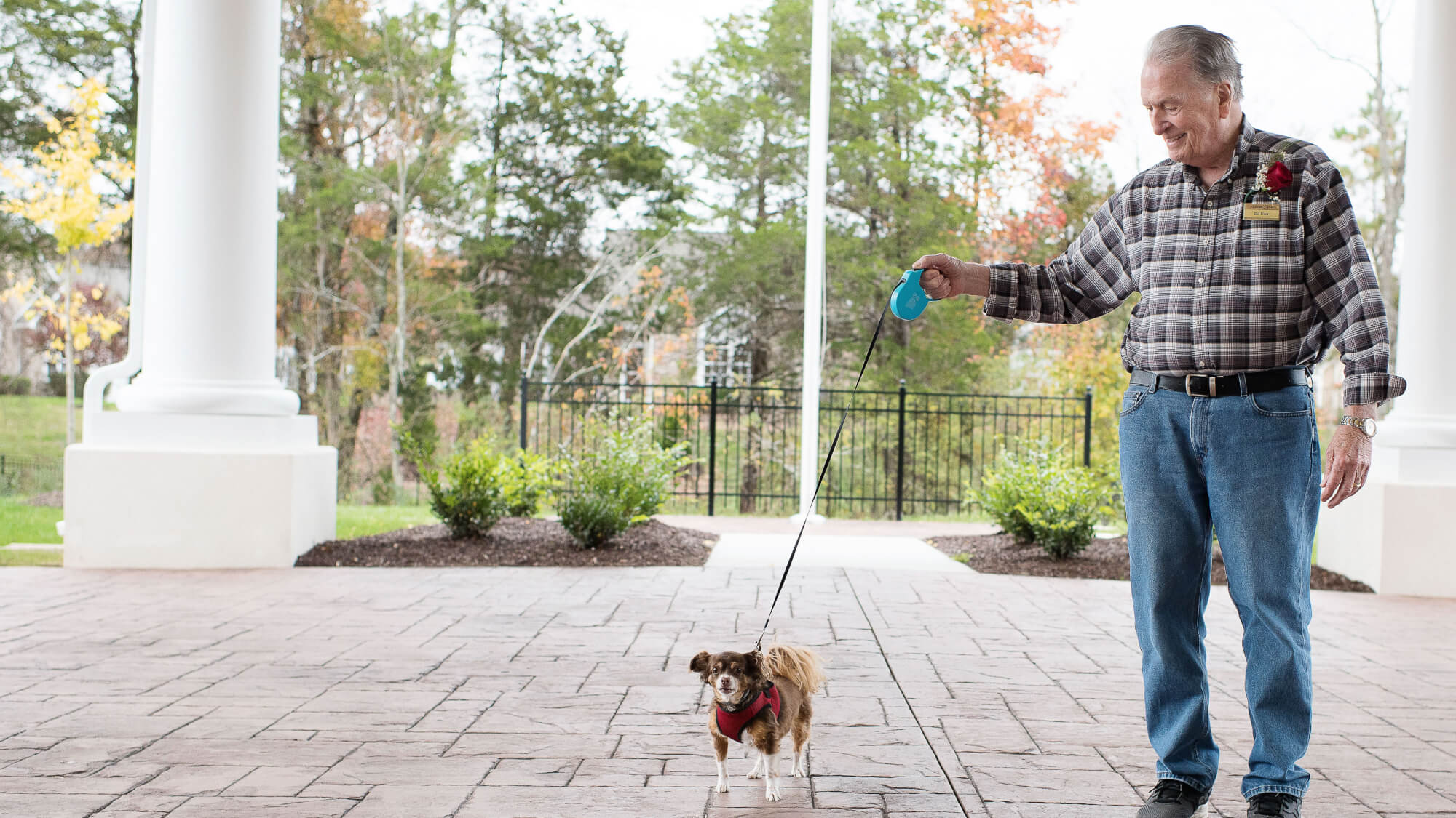 Pets are warmly welcomed at Ashwood Square.