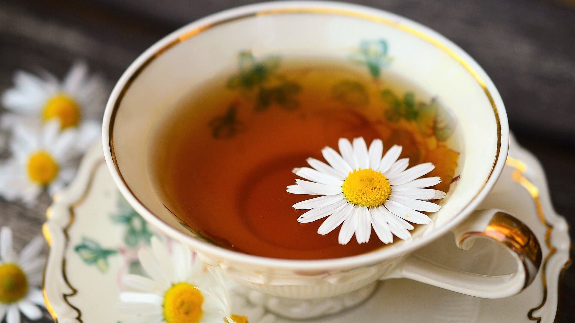 Chamomile tea cup with gold edge