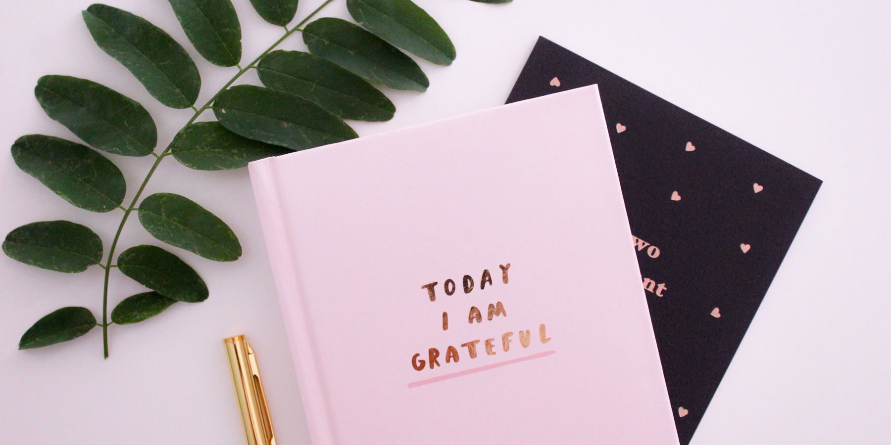The Important Connection Between Seniors and Gratitude