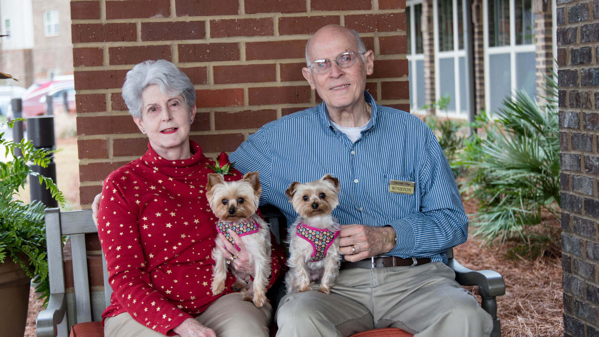 Senior couple sitting on the patio with their dogs.