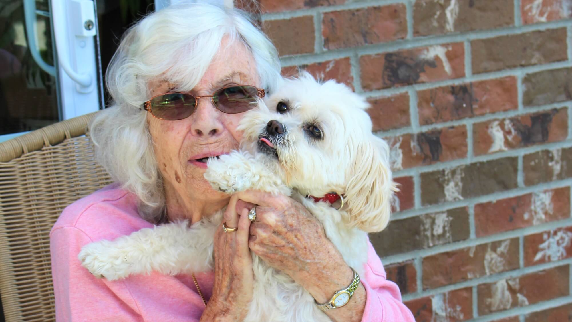 Pets are like family here at Towne Center.